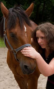 Pferdeosteopathie: Test des ersten Halswirbels